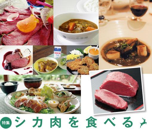特集 シカ肉を食べる