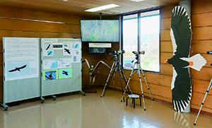 湖北野鳥センター内の山本山の方角(東)に窓がある部屋