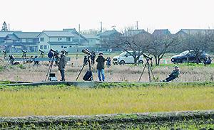 オオワシにカメラを向けて飛翔を待つ人々